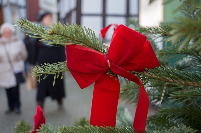 červená mašle na stromě