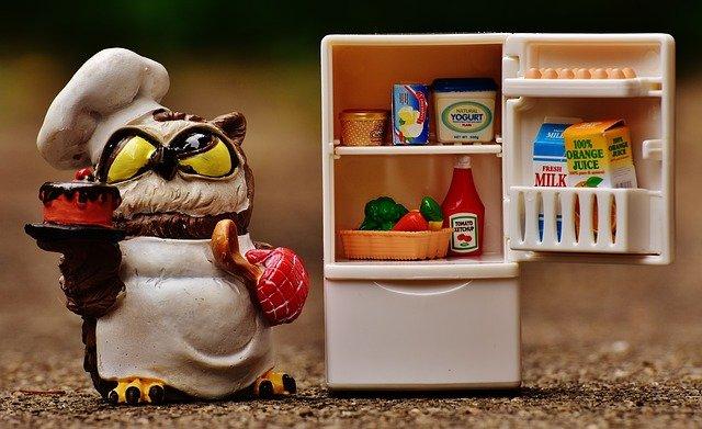sova u lednice