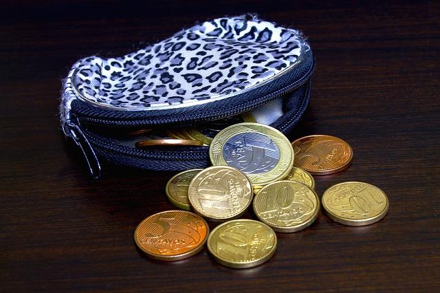 maličká peněženka