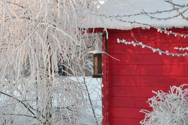 zahrada v zimě s ptačím krmítkem